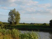 Oulton marshes near Fisher Row