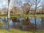 NE Park Flooding