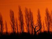 A beautiful sunrise at ILketshall St Margarets Nr Bungay