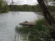 A day out at Fritton lake