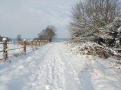 Lovely cold snowy day on Bungay common .