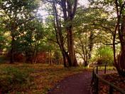 Autumn in lowestoft