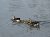 A family day out