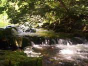 Peaceful  stream in Cumbria