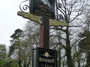 Pelican Pub Sign