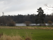 Visit to Fritton Lake