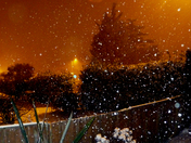 Snowing in Sprowston