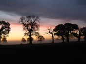 A misty dawn at Lingwood