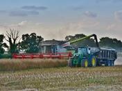 Harvest 2016 Scenes