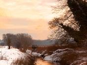 Rush Meadow,Dereham