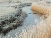 The frozen landscape around the Halvergate Marshes.