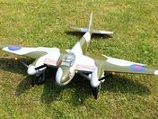 Mosquito model
