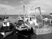 Fishing boats in mono
