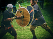 living history meet the vikings