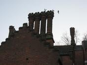 Chimneys in Chapelfield