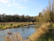 Peaceful River Wensum