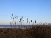 Wide Beach and Big sky