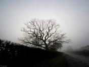 Photo Challenge - Week 5 - Theme: Weather