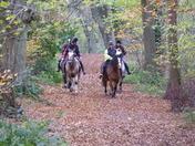 Weston woods pony trekking