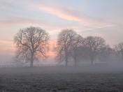 Calming sunrise - mood