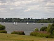 Sailing at Alton Water