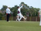 Movement. Cricket