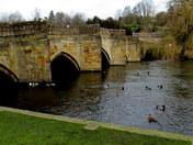Bakewell Bridge C