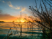 Sunrise at Highbridge reservoir