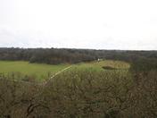 Gazebo View (2)