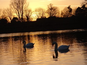 Lake at sunset.(Photo challenge