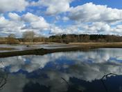 Beautiful skies reflected in Lackford lakes.