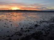 Sunset over the Exe-Estuary
