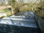 A WALK BY THE RIVER GIPPING AT NEEDHAM MARKET