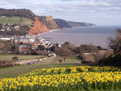 Spring into Sidmouth