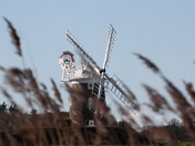 Cley Mill from the reeds