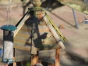 Shadow - Bird on feeder