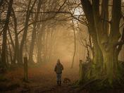 Misty Woodbury morning