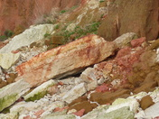 Such Rich Colours In The Rock
