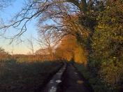 puddled track Martlesham