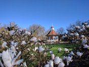 Chapelfield Gardens in spring sunshine