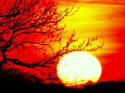 Carlton marshes sunset 2