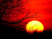 Carlton marshes sunset 3