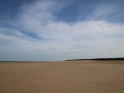 Hot Holkham