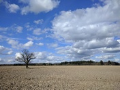 Big Norfolk Sky