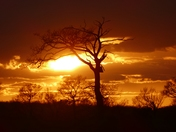 Sunset from the fields in Woolpit.