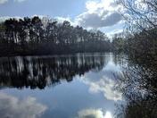 Taverham mill reflections