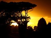 Yellow sunset E
