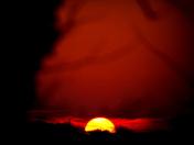 Yellow sunset F
