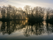 Reflections, Beautiful Dawn