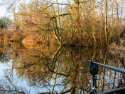 Reflections, Angling Reflections